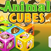 Animal Cubes by Claudio Souza Mattos