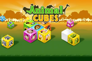 Animal Cubes bild