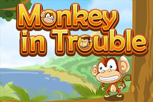القرد في ورطة